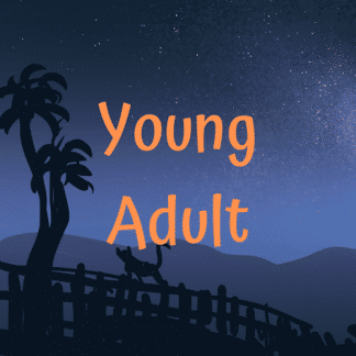 Fiction for 13-15 year olds
