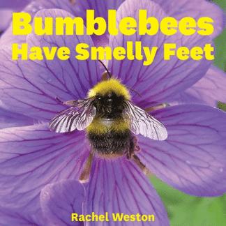 bumblebees-have-smelly-feet-rachel-weston